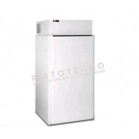 Minicella refrigerata • Refrigerazione ventilata • Temp. -18°/-20°C - Cm. 100x100x212H.