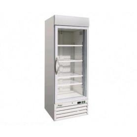 Espositore Refrigerato CONGELATORE ventilato • Capacità 578 Lt. • -18°/-22°C